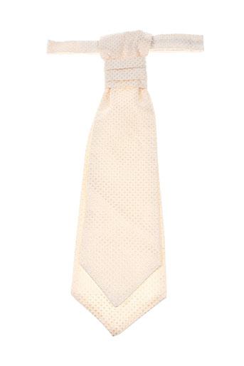 Cravate beige PAL ZILERI pour homme